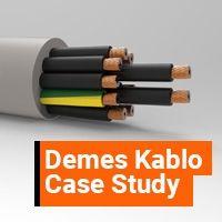 Control Cables Certification Case Study: Demes Kablo